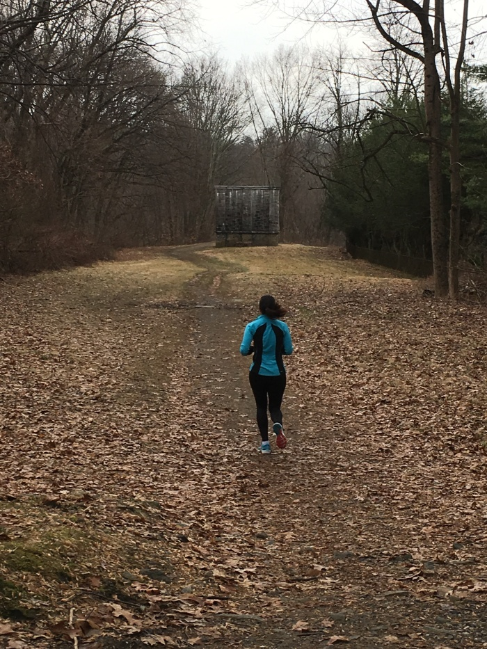 Running Down the Old Croton Aqueduct, partIII